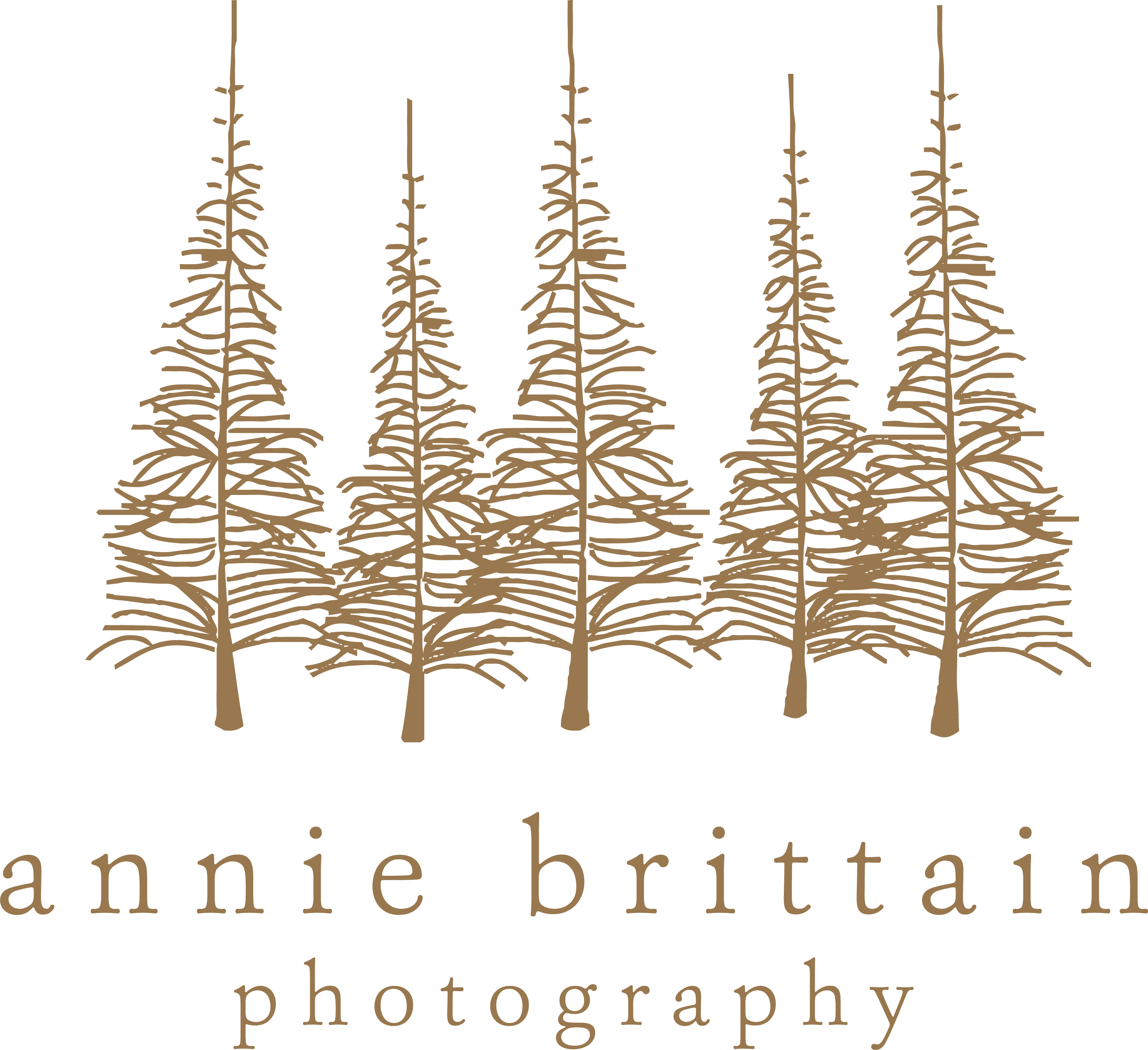 Surrey Family Photographer, Lightwater Photographer